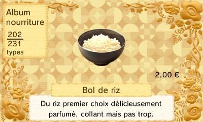 Bol riz
