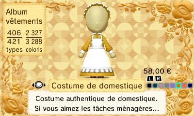 Costume domestique
